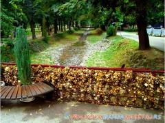 Most ljubavi -   Vrnjačka Banja