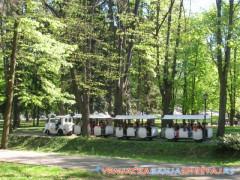 Vozić u Vrnjačkoj Banji -   Vrnjačka Banja