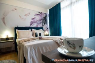 Apartman Grujić Promenada 3 - apartmani u Vrnjačkoj Banji