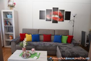 Apartman Petar 2 - apartmani u Vrnjačkoj Banji