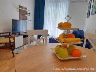 Apartman SANA - apartmani u Vrnjačkoj Banji