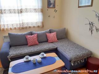 Apartman SNEŽANA - Vrnjačka Banja Apartmani