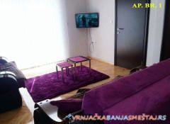 Apartman Tina i Sara - Vrnjačka Banja Apartmani