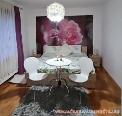 Apartmani Mega House - vile u Vrnjačkoj Banji