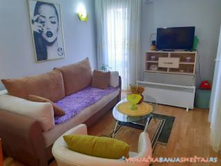 Apartmani MILENA - Vrnjačka Banja Apartmani