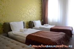 Apartmani Royal Suites - Vrnjačka Banja Apartmani
