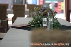 Vila HORIZONT - Vrnjačka Banja Goc
