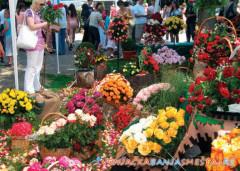 Sajam cveća i starih zanata - od 13.07.do 22.07.2018. -   Vrnjačka Banja Vesti